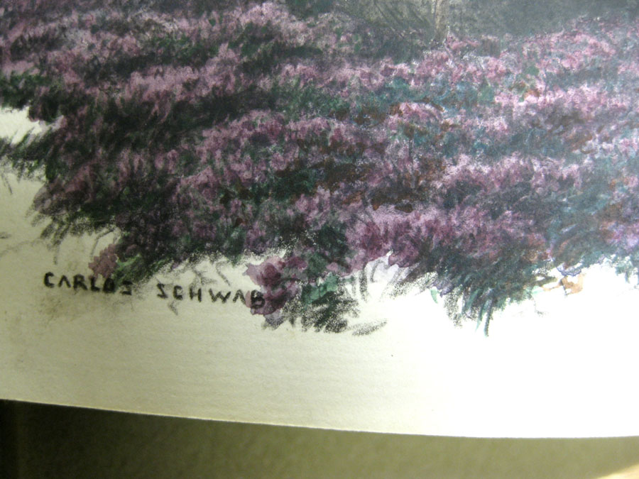 Schwabe signature closeup