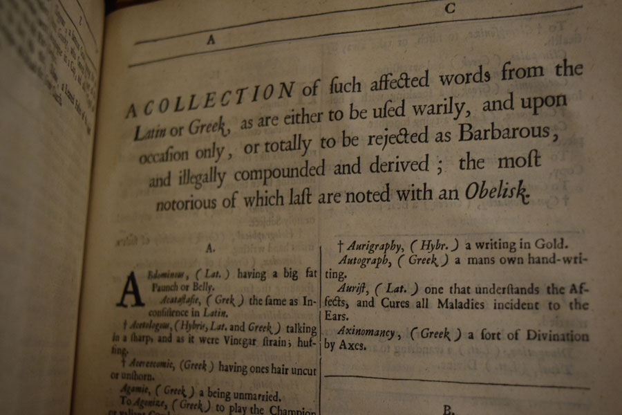 a photograph of a page in a dictionary