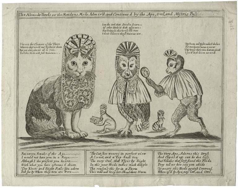 Cat and owl and ape